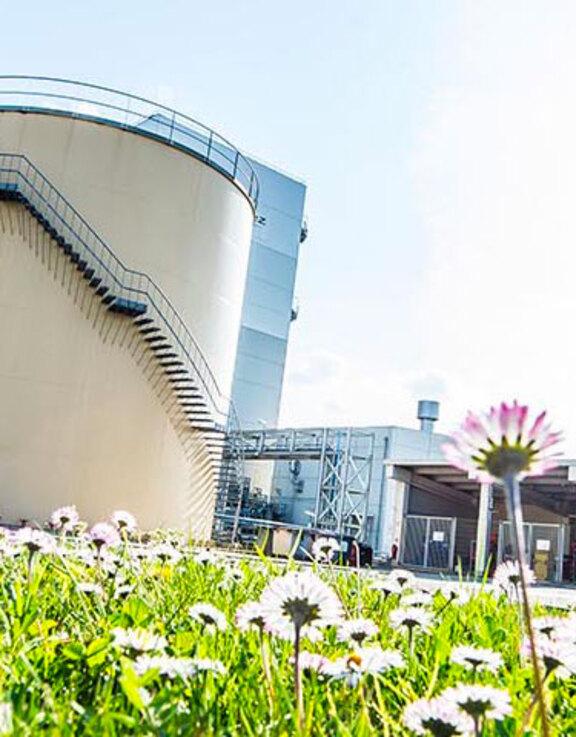 cogenerazione impianti termici